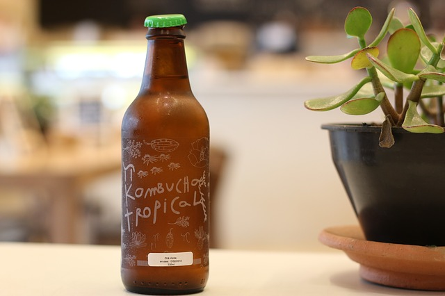 kombucha – fermentovaný nápoj.jpg