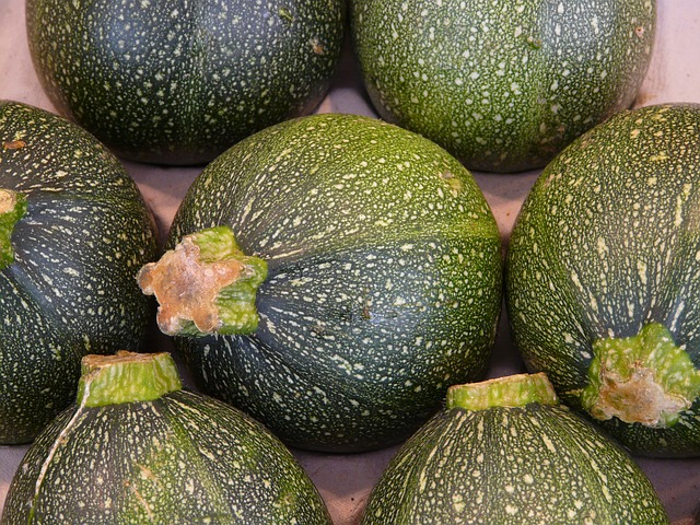 Zelené guľaté cukety.jpg