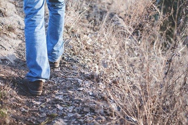 Muž kráča po lesnej ceste medzi suchou trávou.jpg